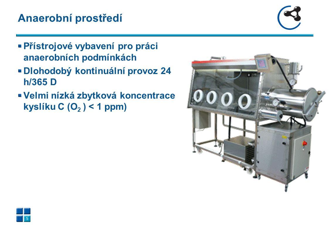 Přístrojové vybavení pro práci anaerobních podmínkách Dlohodobý kontinuální provoz 24 h/365 D Velmi nízká zbytková koncentrace kyslíku C (O 2 ) < 1 ppm) Anaerobní prostředí 5