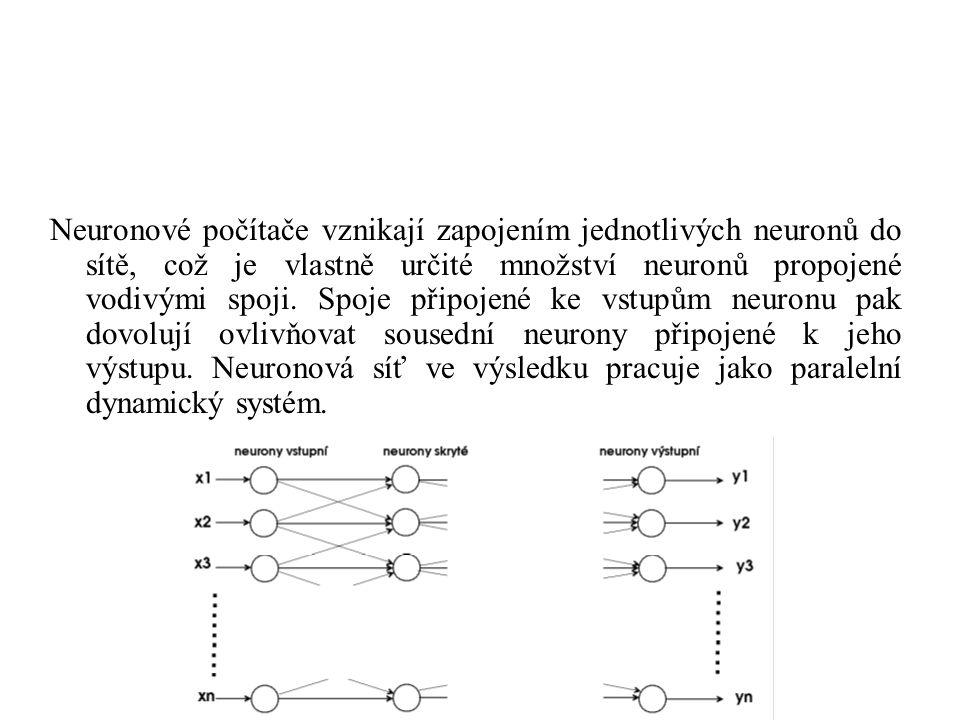 Neurony lze rozdělit podle toho pro jakou činnost jsou určeny :  neurony určené pro vstup  neurony určené pro výstup  neurony skryté (nejsou ani vstupní ani výstupní) Spoje mezi neurony mohou být :  jednosměrné  obousměrné