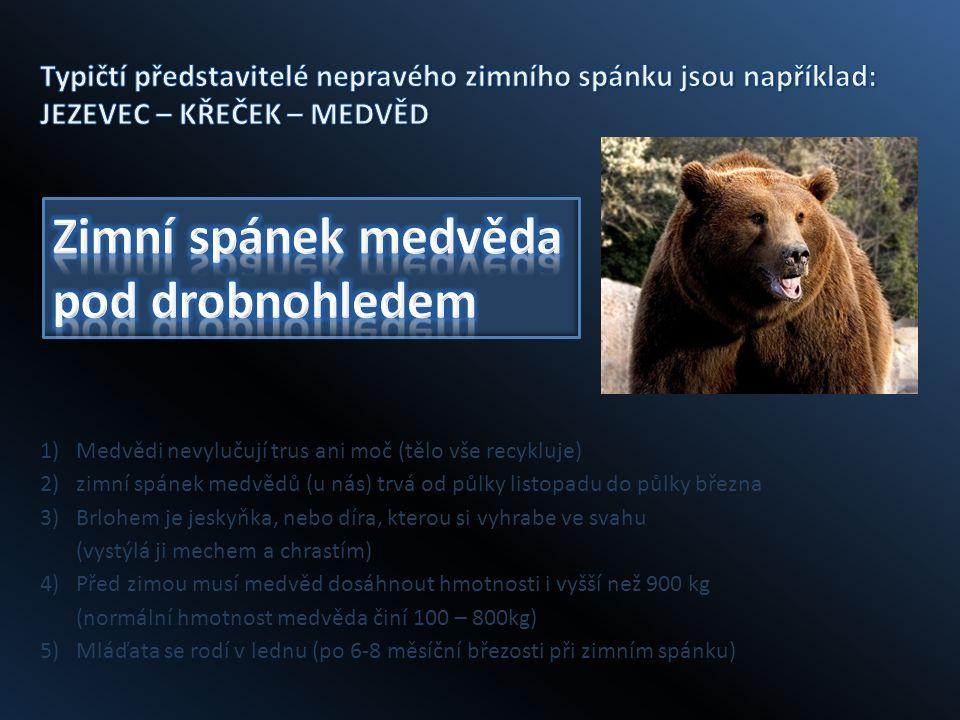 1)Medvědi nevylučují trus ani moč (tělo vše recykluje) 2)zimní spánek medvědů (u nás) trvá od půlky listopadu do půlky března 3)Brlohem je jeskyňka, nebo díra, kterou si vyhrabe ve svahu (vystýlá ji mechem a chrastím) 4)Před zimou musí medvěd dosáhnout hmotnosti i vyšší než 900 kg (normální hmotnost medvěda činí 100 – 800kg) 5)Mláďata se rodí v lednu (po 6-8 měsíční březosti při zimním spánku)