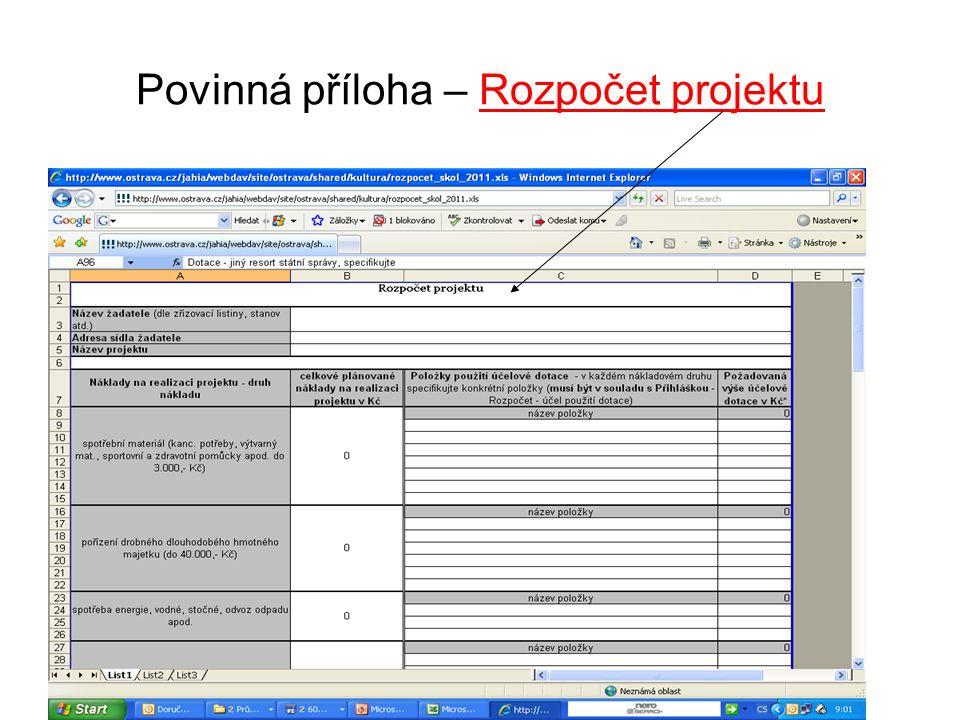 Povinná příloha – Rozpočet projektu
