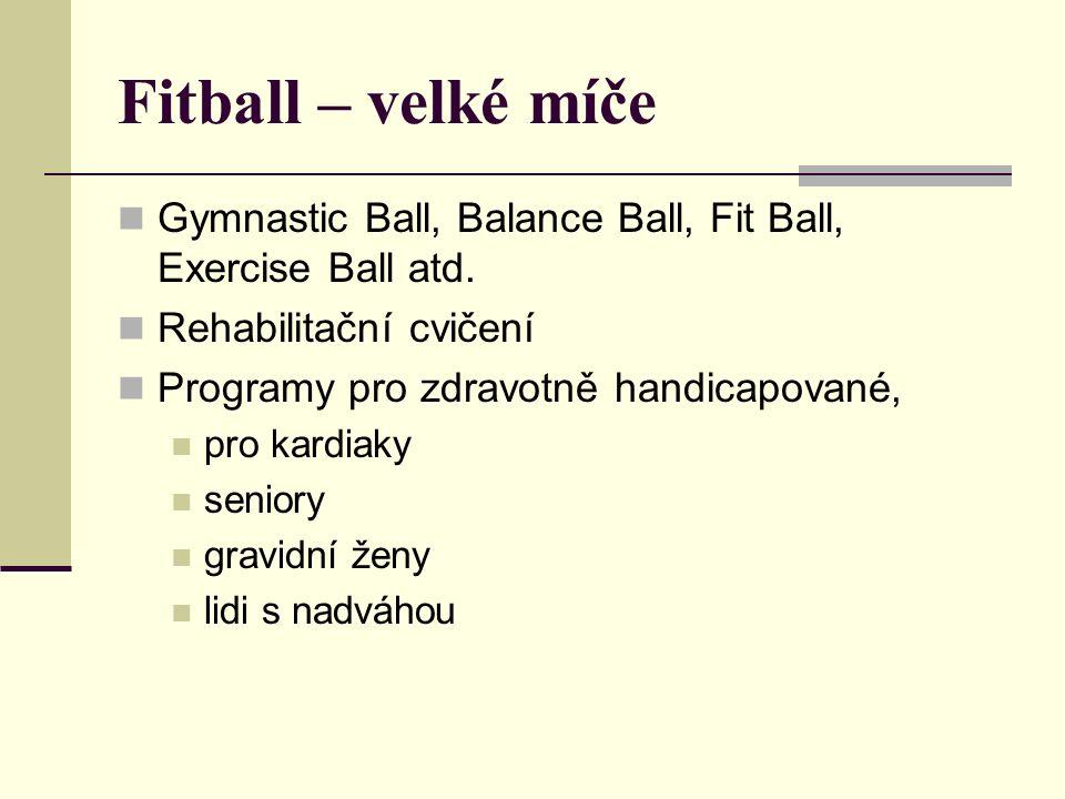 Cvičební lekce ed na míči, pohupy, zvedání nohou, šlapání, poskoky v sedu polohy těla – balanční cvičení v lehu na břiše, boku, na zádech a ve smíšených podporech posilovací cvičení aerobní cvičení strečink