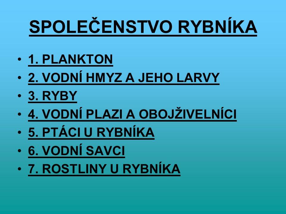 SPOLEČENSTVO RYBNÍKA 1. PLANKTON 2. VODNÍ HMYZ A JEHO LARVY 3.