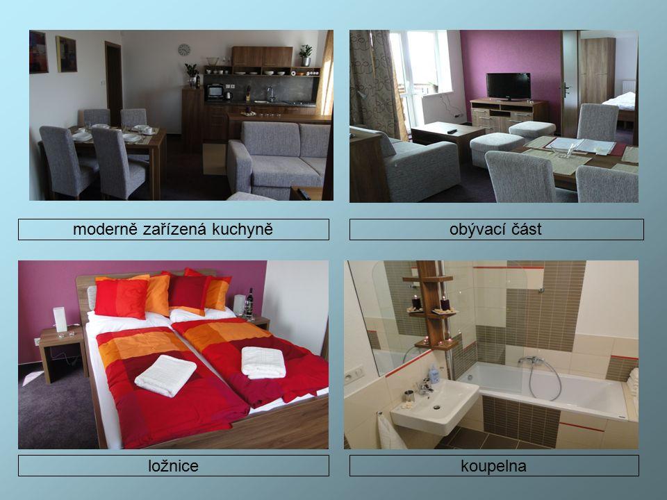 moderně zařízená kuchyněobývací část ložnice koupelna