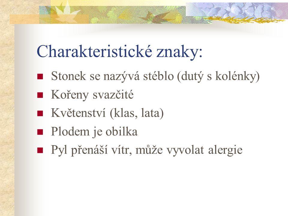 Charakteristické znaky: Stonek se nazývá stéblo (dutý s kolénky) Kořeny svazčité Květenství (klas, lata) Plodem je obilka Pyl přenáší vítr, může vyvolat alergie