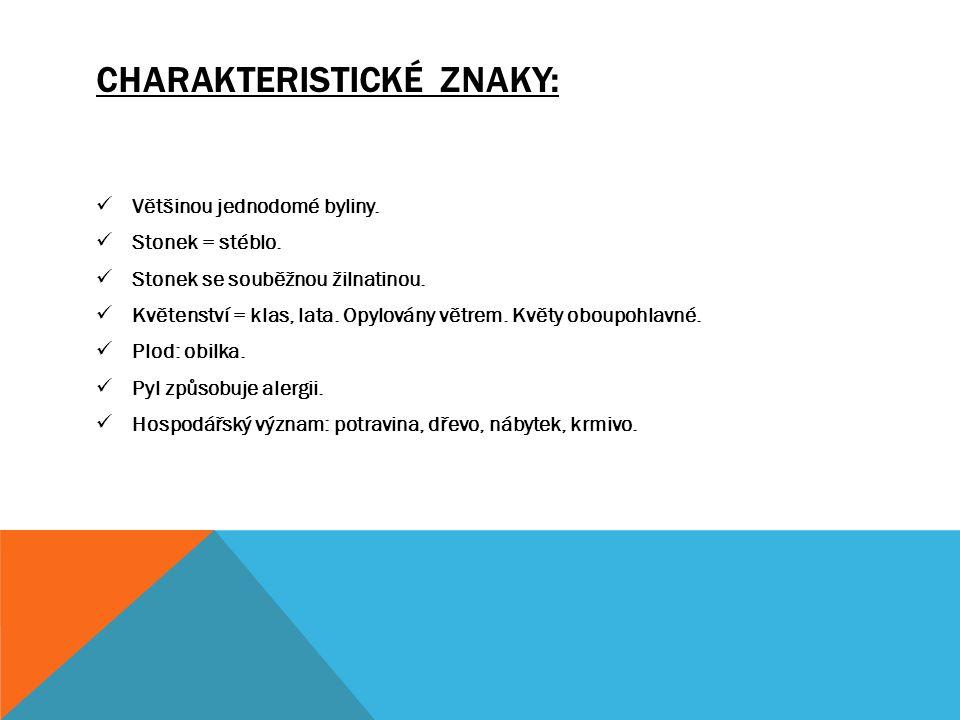 CHARAKTERISTICKÉ ZNAKY: - Vytrvalé byliny.- Oddenky nebo kořenové hlízy.