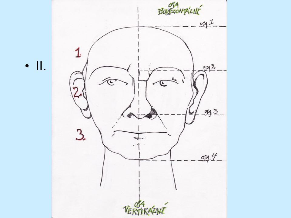 b) Důležité je posazení, umístění hlavy na krk.Pomáhá nám osa vertikální.