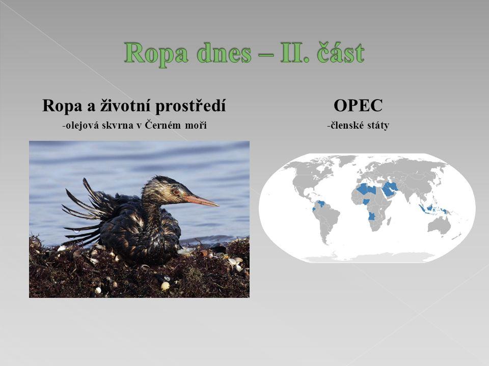 Ropa a životní prostředí -olejová skvrna v Černém moři OPEC -členské státy
