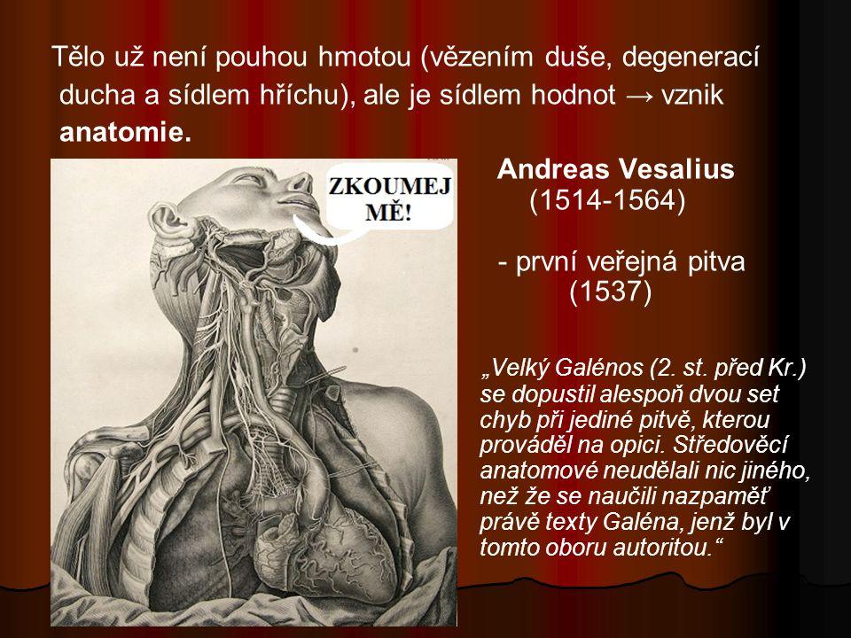 Tělo už není pouhou hmotou (vězením duše, degenerací ducha a sídlem hříchu), ale je sídlem hodnot → vznik anatomie.