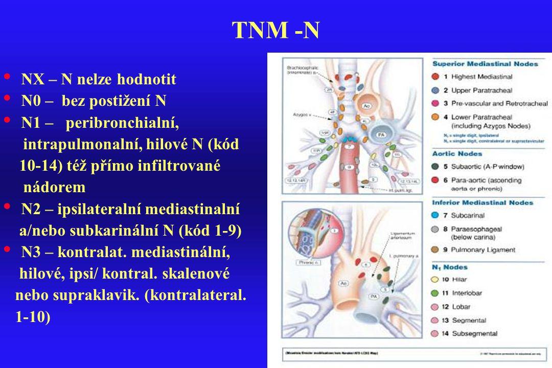 TNM -N NX – N nelze hodnotit N0 – bez postižení N N1 – peribronchialní, intrapulmonalní, hilové N (kód 10-14) též přímo infiltrované nádorem N2 – ipsi