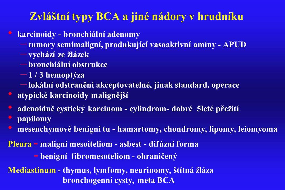 Zvláštní typy BCA a jiné nádory v hrudníku karcinoidy - bronchiální adenomy – tumory semimaligní, produkující vasoaktivní aminy - APUD – vychází ze žl