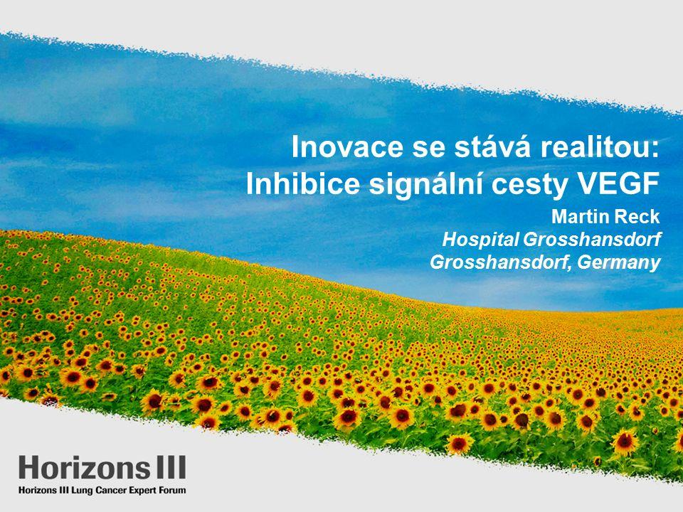 Inovace se stává realitou: Inhibice signální cesty VEGF Martin Reck Hospital Grosshansdorf Grosshansdorf, Germany