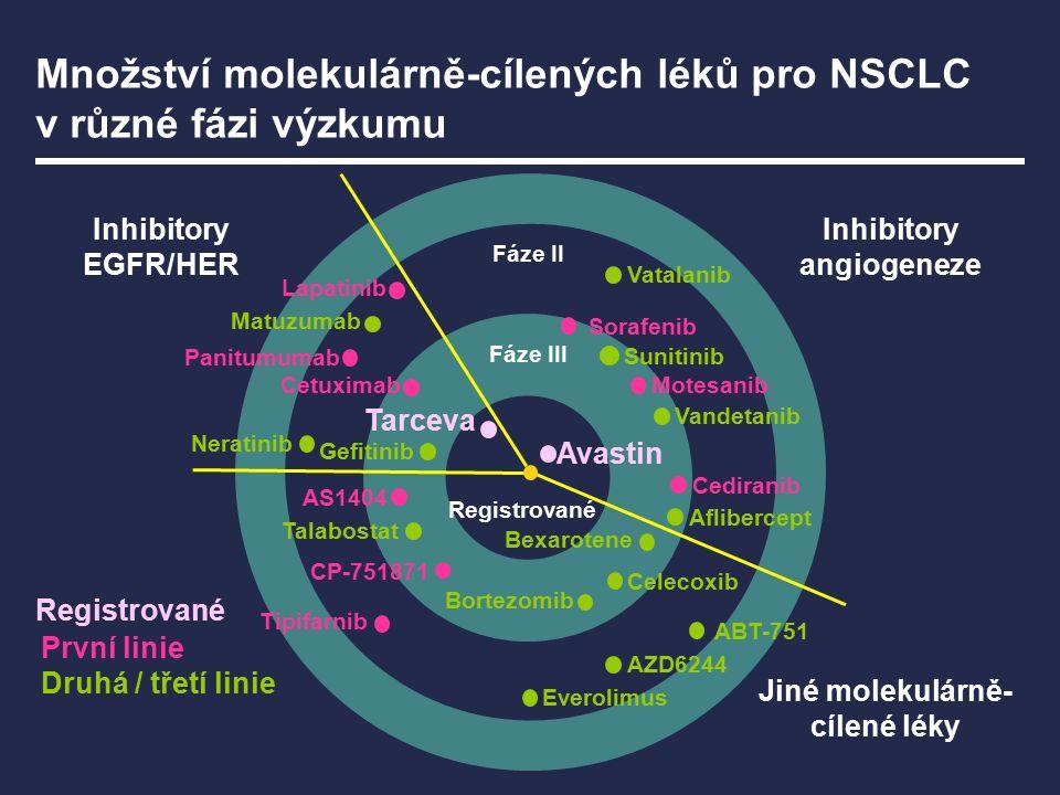 Avastin je jediným anti-VEGF lékem dostupným u NSCLC k rutinní léčbě první linie Fáze II Fáze III Avastin Registrované Avastin Inhibitory angiogeneze Inhibitory EGFR/HER Jiné molekulárně- cílené léky Registrované
