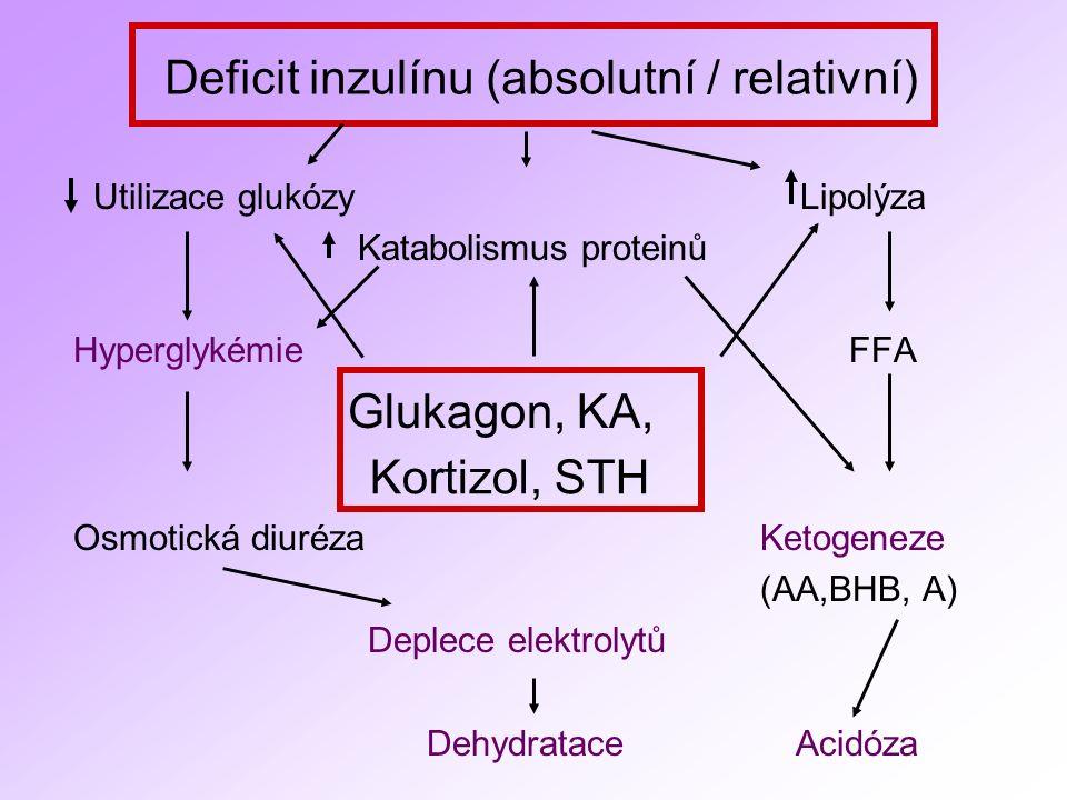 Deficit inzulínu (absolutní / relativní) Utilizace glukózy Lipolýza Katabolismus proteinů Hyperglykémie FFA Glukagon, KA, Osmotická diuréza Ketogeneze (AA,BHB, A) Deplece elektrolytů Dehydratace Acidóza Kortizol, STH