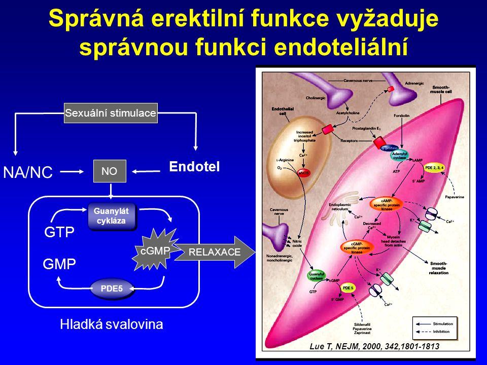 Lue T, NEJM, 2000, 342,1801-1813 Správná erektilní funkce vyžaduje správnou funkci endoteliální Endotel GMP GTP NO NA/NC Guanylát cykláza PDE5 RELAXACE cGMP Hladká svalovina Sexuální stimulace
