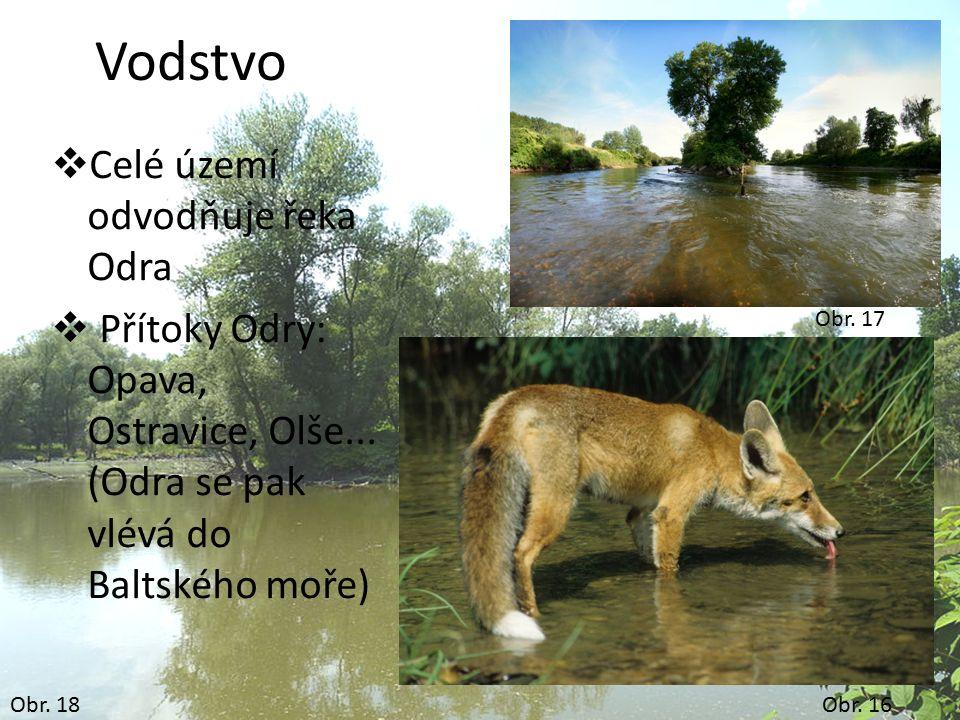 Obr. 18 Vodstvo  Celé území odvodňuje řeka Odra  Přítoky Odry: Opava, Ostravice, Olše... (Odra se pak vlévá do Baltského moře) Obr. 16 Obr. 17