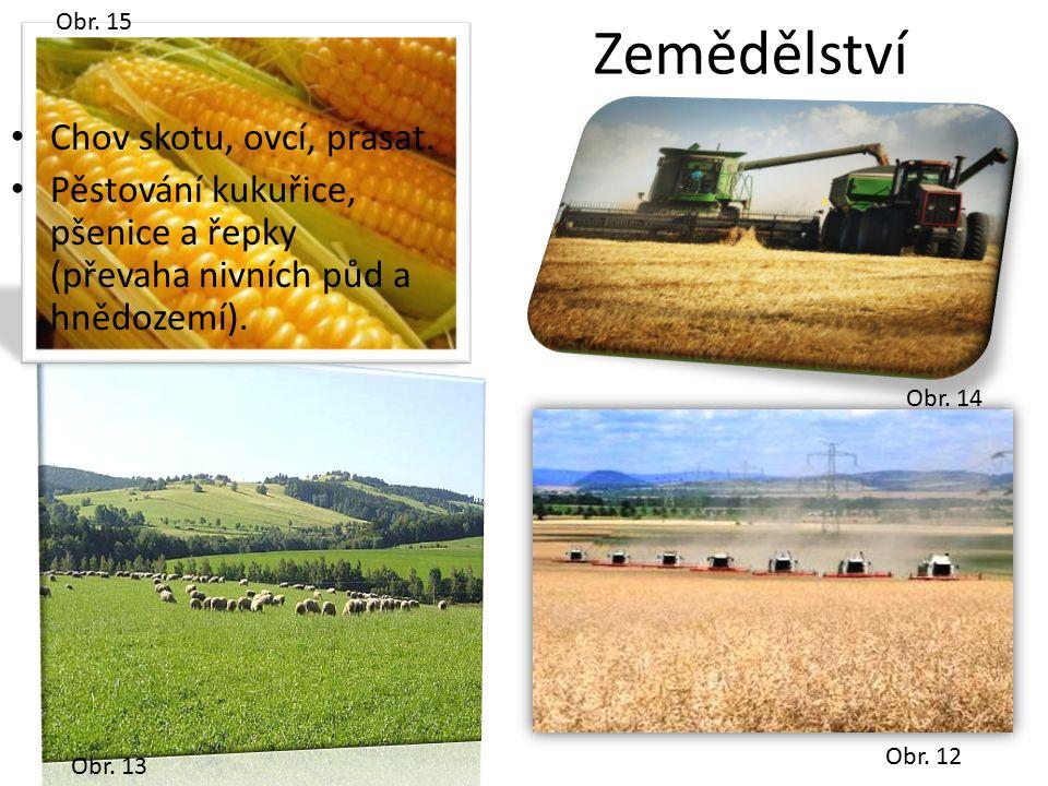 Obr. 12 Obr. 13 Obr. 15 Obr. 14 Zemědělství Chov skotu, ovcí, prasat. Pěstování kukuřice, pšenice a řepky (převaha nivních půd a hnědozemí).