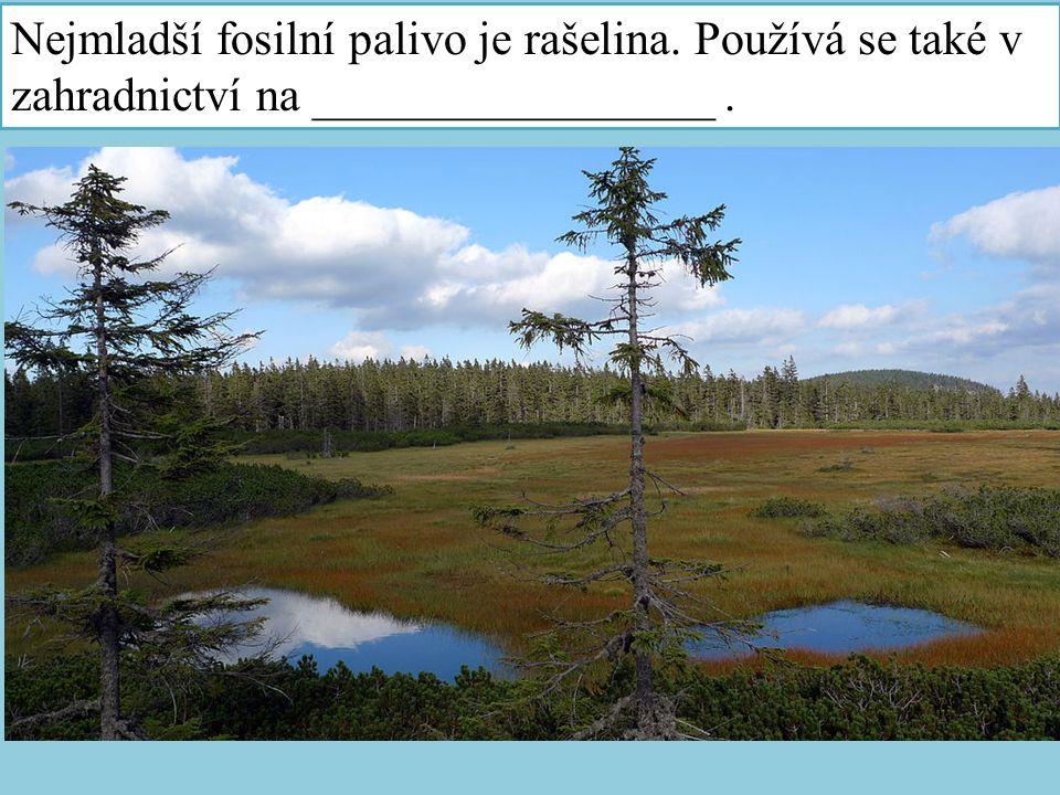 Nejmladší fosilní palivo je rašelina. Používá se také v zahradnictví na _________________.