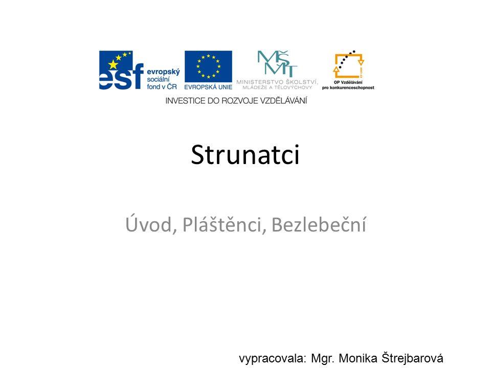 Strunatci Úvod, Pláštěnci, Bezlebeční vypracovala: Mgr. Monika Štrejbarová