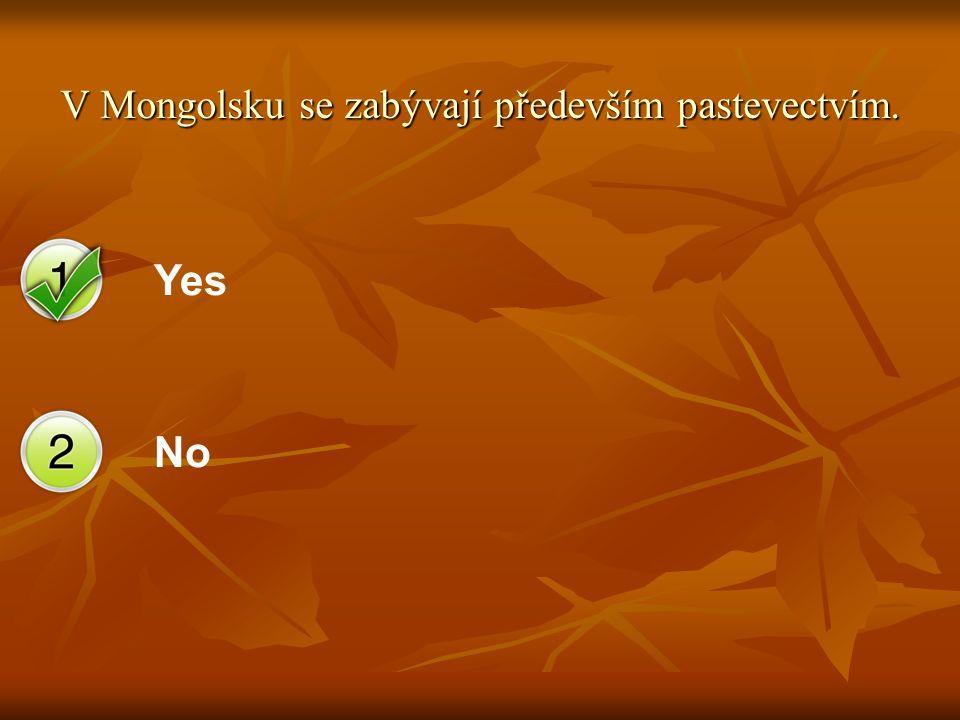 Yes No V Mongolsku se zabývají především pastevectvím.