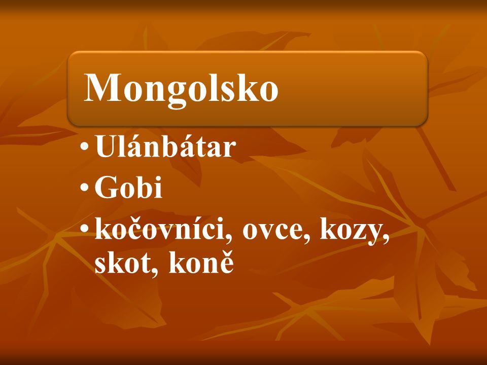Mongolsko Ulánbátar Gobi kočovníci, ovce, kozy, skot, koně