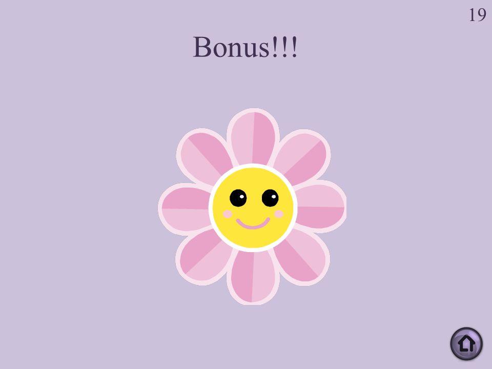 Bonus!!! 19