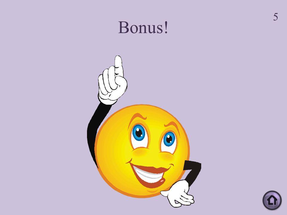 Bonus! 5