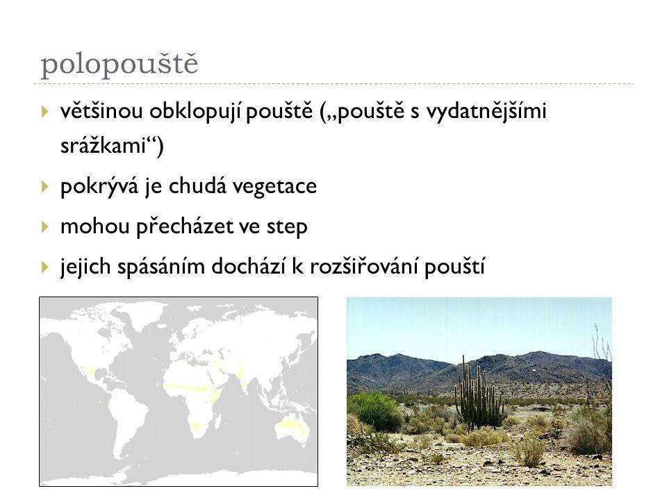 """polopouště  většinou obklopují pouště (""""pouště s vydatnějšími srážkami"""")  pokrývá je chudá vegetace  mohou přecházet ve step  jejich spásáním doch"""