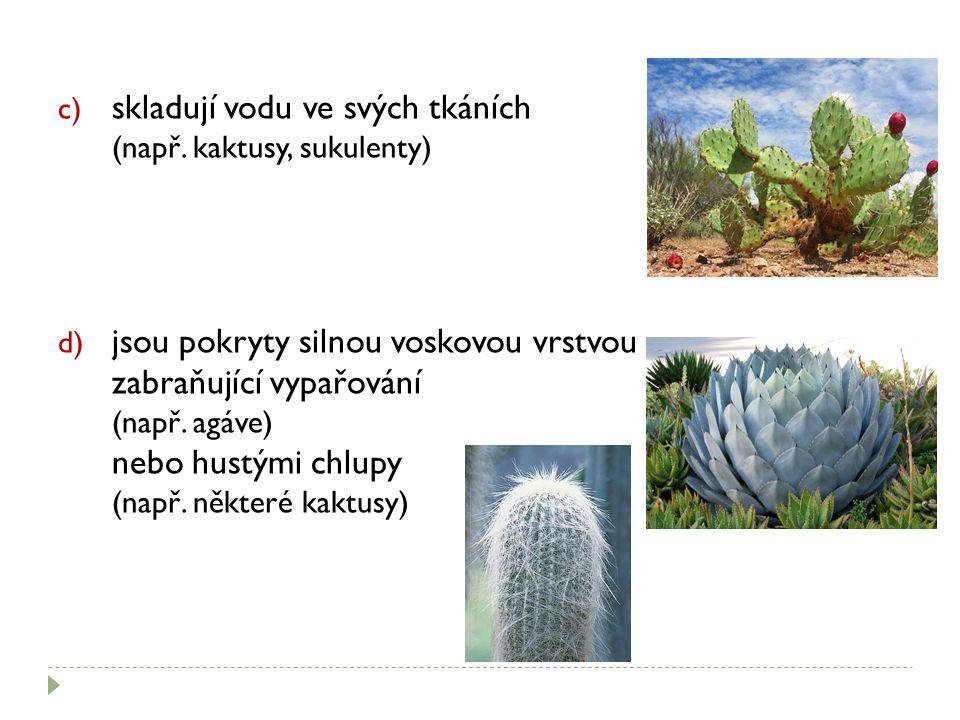 c) skladují vodu ve svých tkáních (např. kaktusy, sukulenty) d) jsou pokryty silnou voskovou vrstvou zabraňující vypařování (např. agáve) nebo hustými