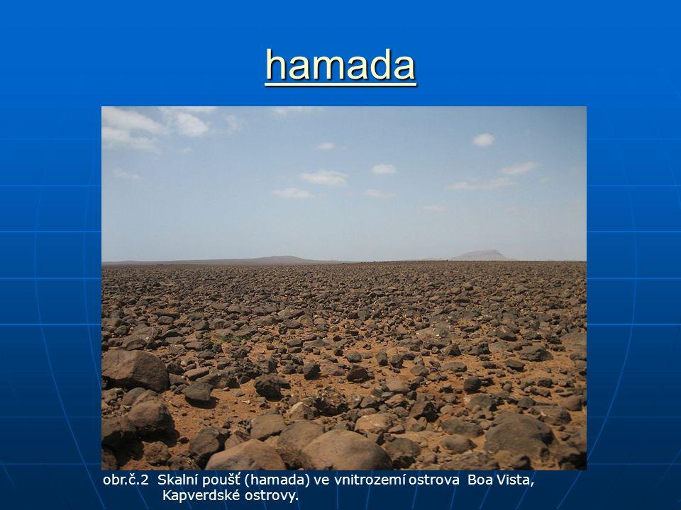 hamada obr.č.2 Skalní poušť (hamada) ve vnitrozemí ostrova Boa Vista, Kapverdské ostrovy.