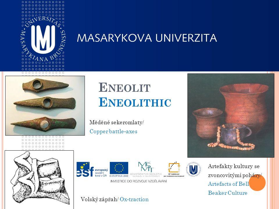 E NEOLIT E NEOLITHIC Měděné sekeromlaty/ Copper battle-axes Artefakty kultury se zvoncovitými poháry/ Artefacts of Bell Beaker Culture Volský zápřah/