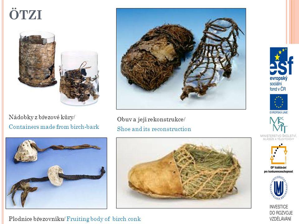 ÖTZI Nádobky z březové kůry/ Containers made from birch-bark Obuv a její rekonstrukce/ Shoe and its reconstruction Plodnice březovníku/ Fruiting body