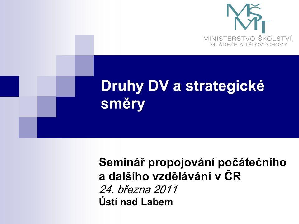 Základní informace o DV Definice DV (v zákoně č.