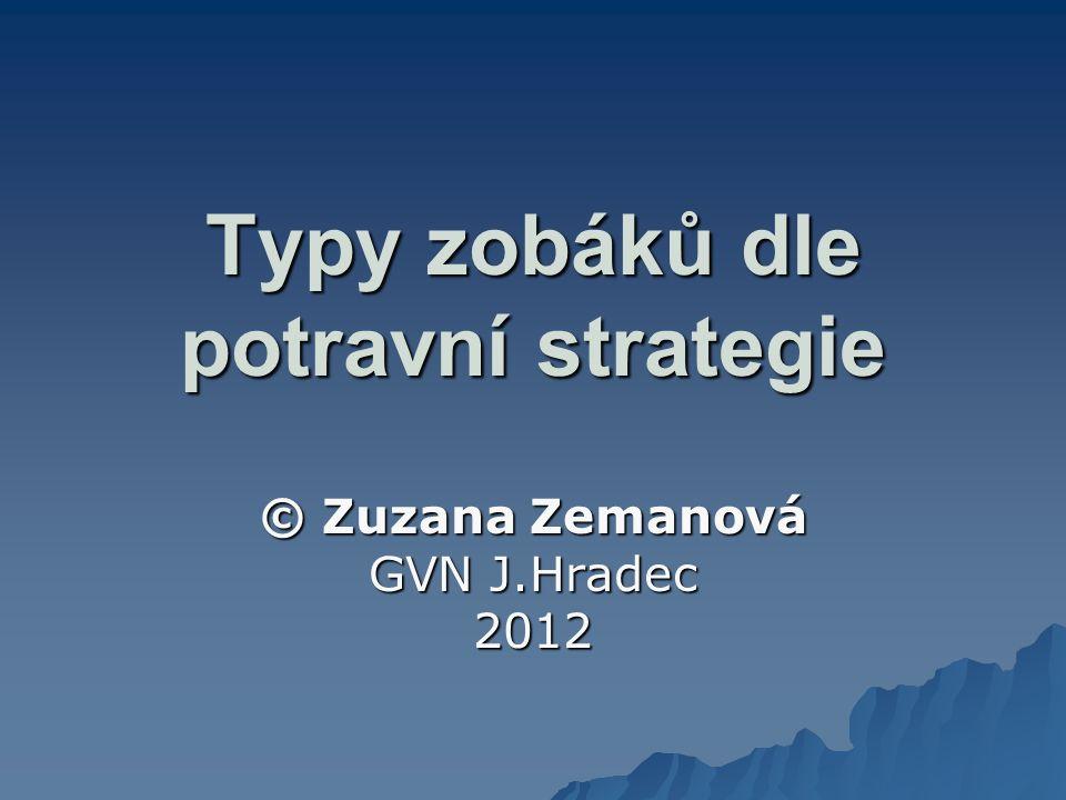 Typy zobáků dle potravní strategie © Zuzana Zemanová GVN J.Hradec 2012