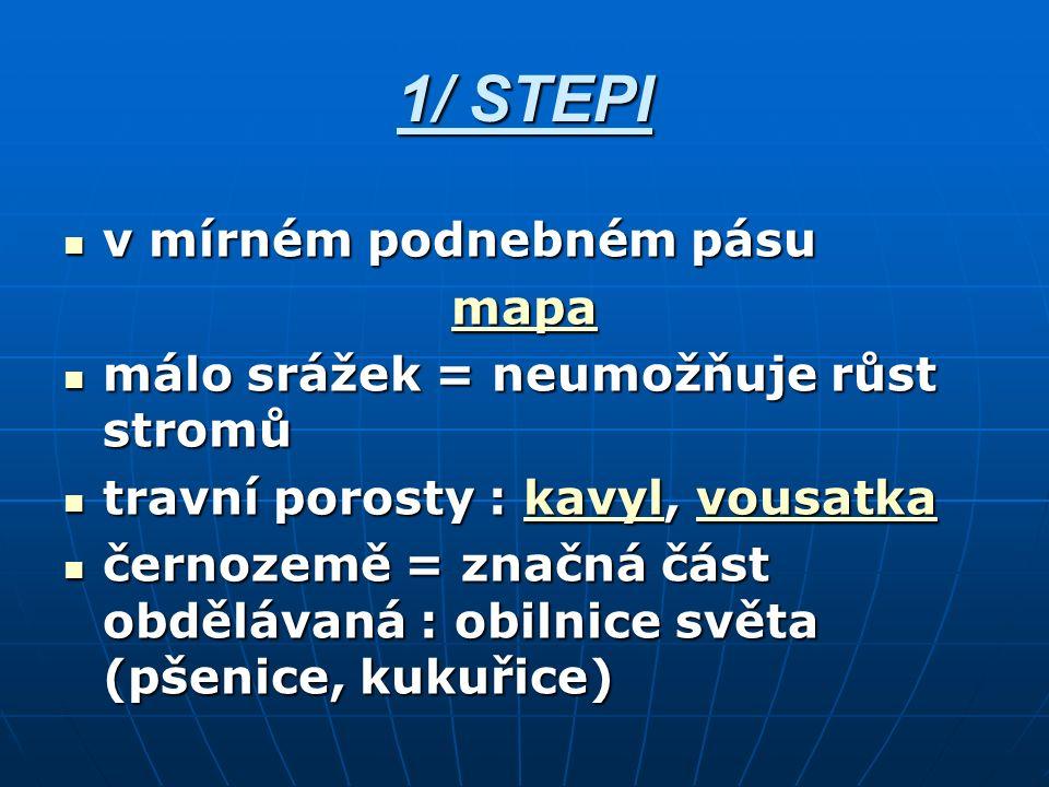 Kavyl obr.č.1 Stipa lessingiana roste ve stepních formacích Ruska.