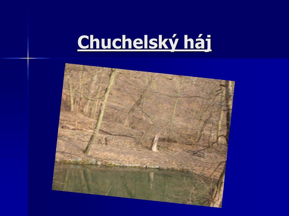 Chuchelský háj