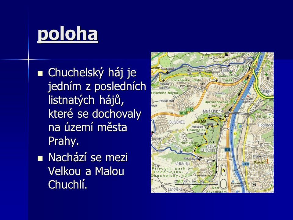 poloha Chuchelský háj je jedním z posledních listnatých hájů, které se dochovaly na území města Prahy.