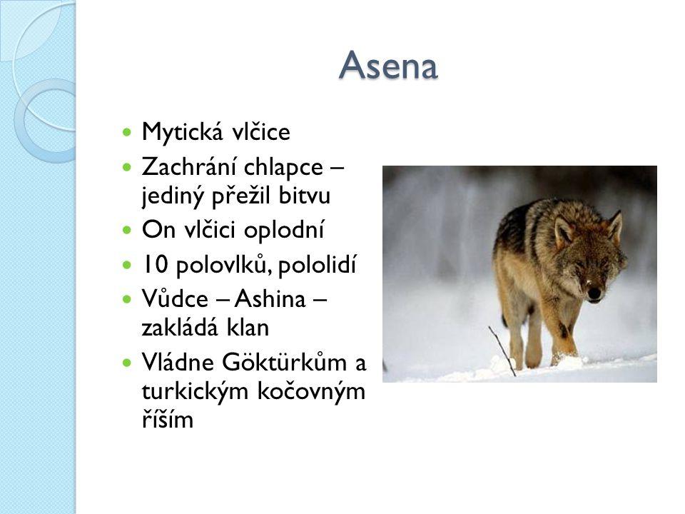 Asena Mytická vlčice Zachrání chlapce – jediný přežil bitvu On vlčici oplodní 10 polovlků, pololidí Vůdce – Ashina – zakládá klan Vládne Göktürkům a turkickým kočovným říším