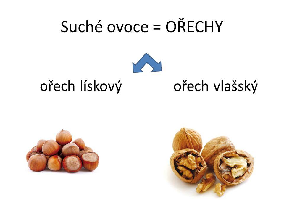 Suché ovoce = OŘECHY ořech lískovýořech vlašský