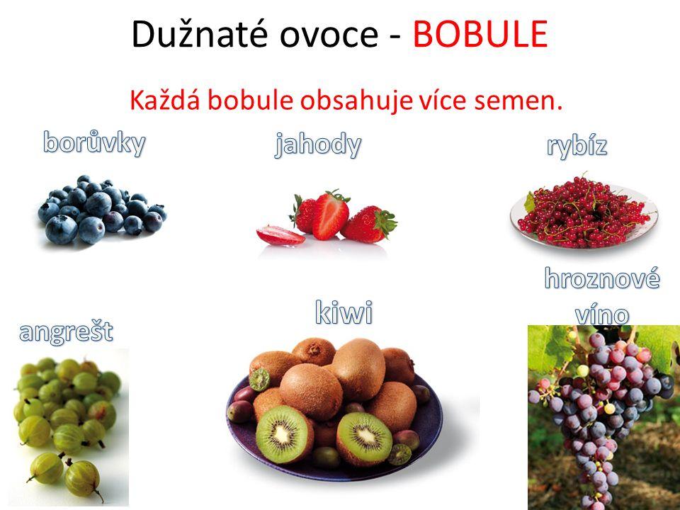 Ořechy Patří mezi suché ovoce.