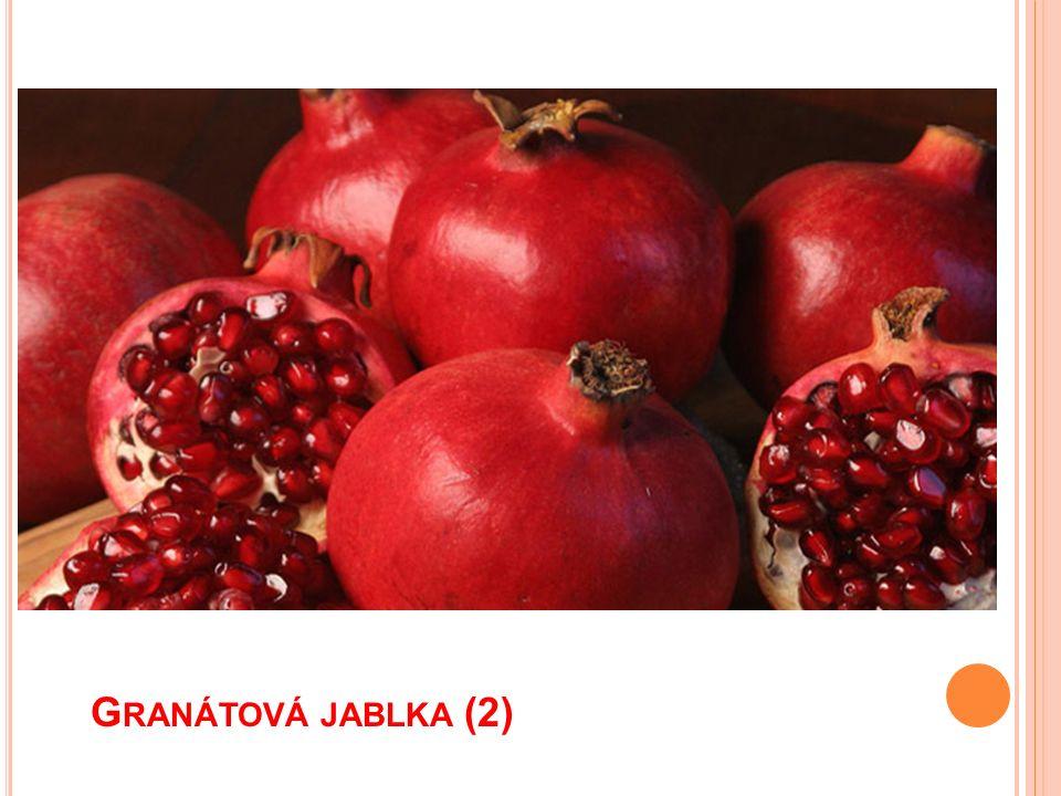 G RANÁTOVÁ JABLKA (2)