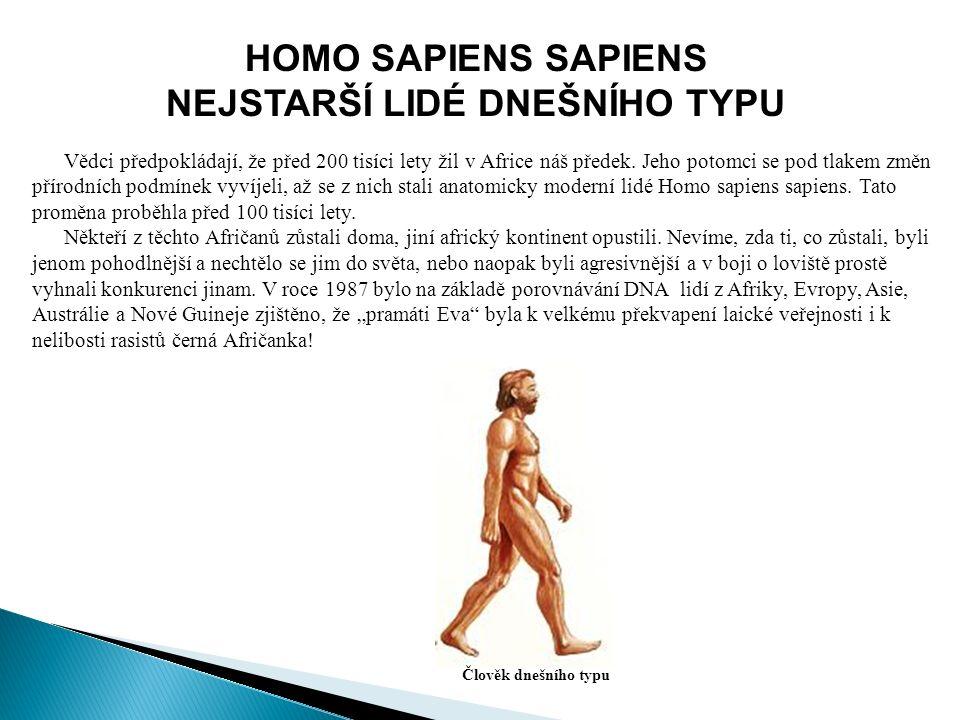 HOMO SAPIENS SAPIENS NEJSTARŠÍ LIDÉ DNEŠNÍHO TYPU Vědci předpokládají, že před 200 tisíci lety žil v Africe náš předek.