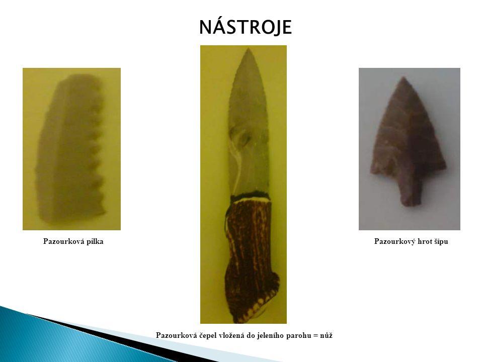 NÁSTROJE Pazourková pilka Pazourková čepel vložená do jeleního parohu = nůž Pazourkový hrot šípu
