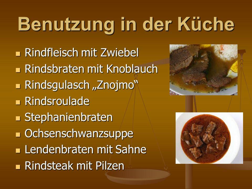 """Benutzung in der Küche Rindfleisch mit Zwiebel Rindfleisch mit Zwiebel Rindsbraten mit Knoblauch Rindsbraten mit Knoblauch Rindsgulasch """"Znojmo"""" Rinds"""