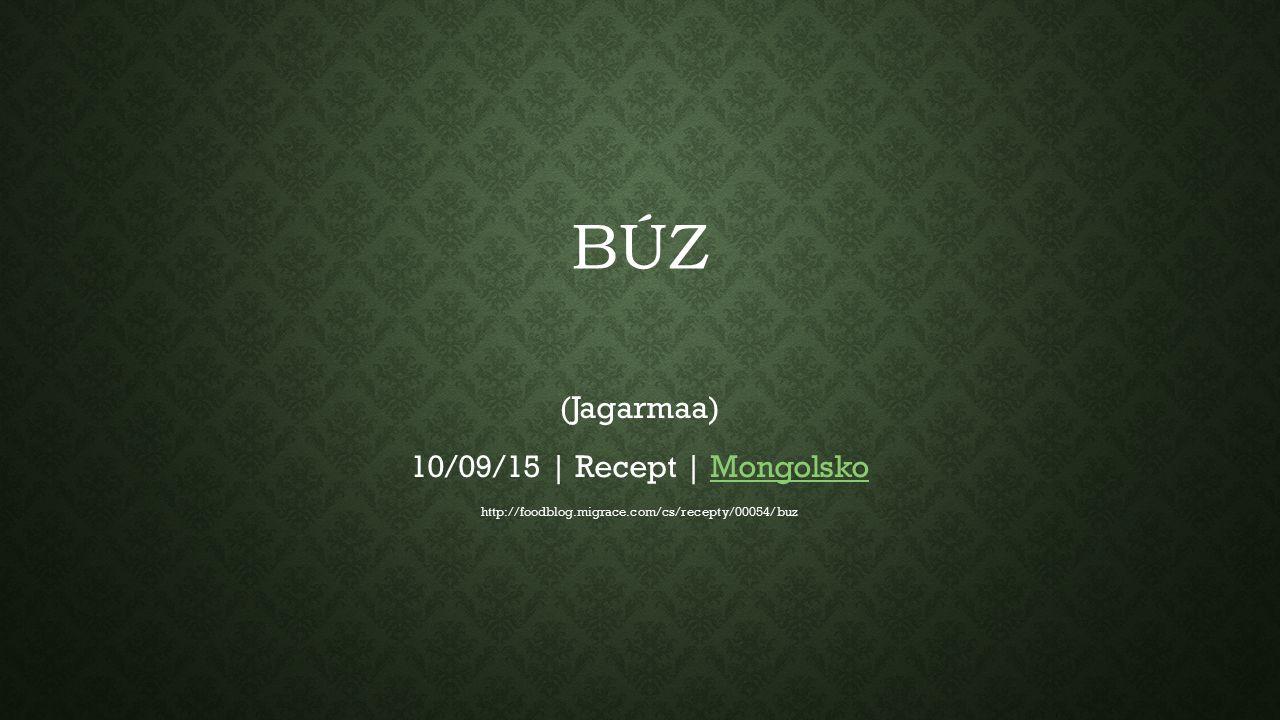 BÚZ (Jagarmaa) 10/09/15 | Recept | MongolskoMongolsko http://foodblog.migrace.com/cs/recepty/00054/buz