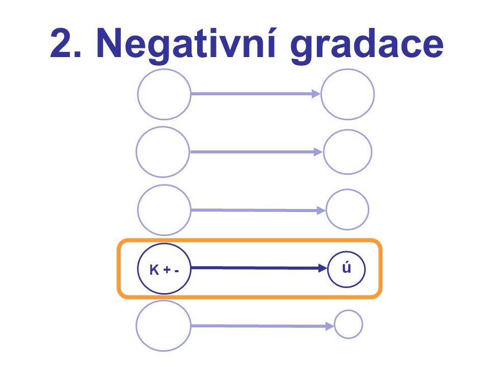 2. Negativní gradace K + - ú