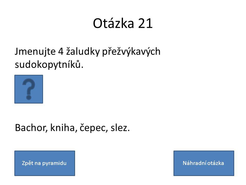 Otázka 21 Jmenujte 4 žaludky přežvýkavých sudokopytníků.