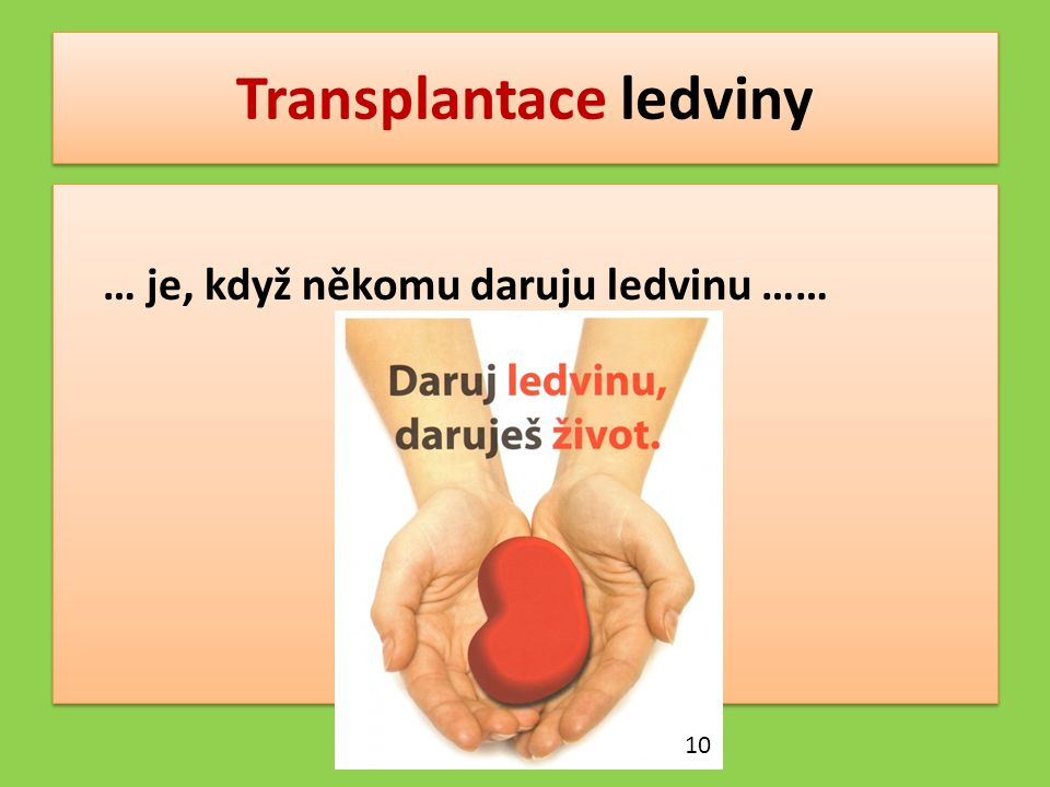 Transplantace ledviny … je, když někomu daruju ledvinu …… 10