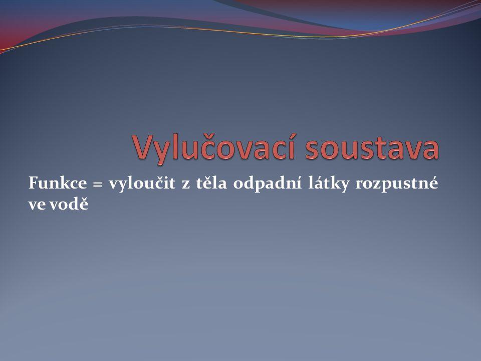 Zdroje: PAEDDR.ČERNÍK, Vladimír; PROF. RNDR. BIČÍK, CSC., Vítězslav; RNDR.