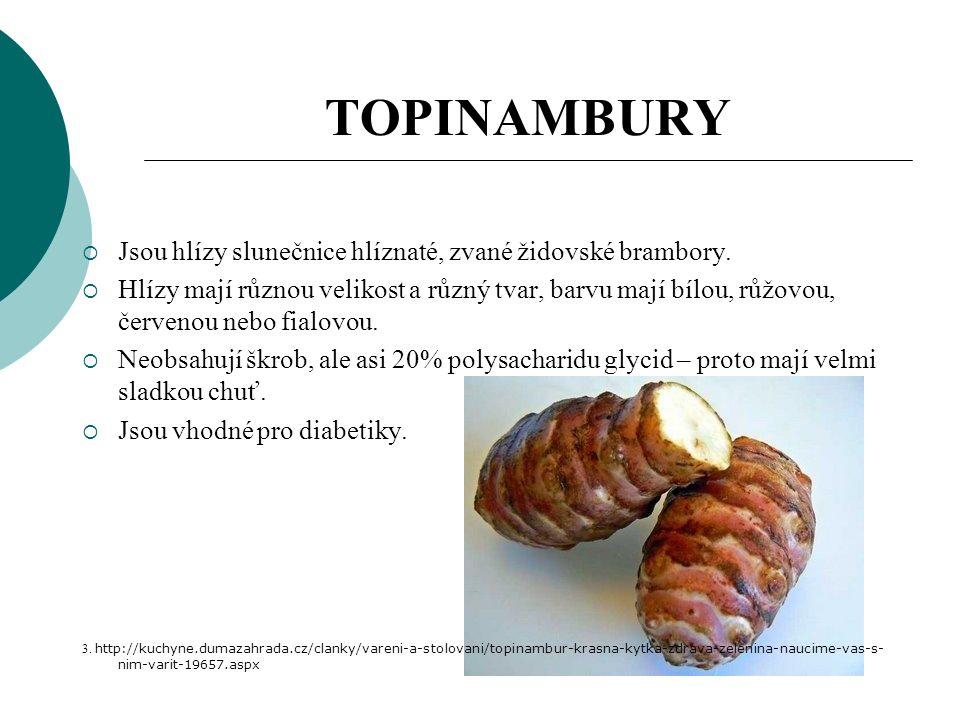 TOPINAMBURY  Jsou hlízy slunečnice hlíznaté, zvané židovské brambory.