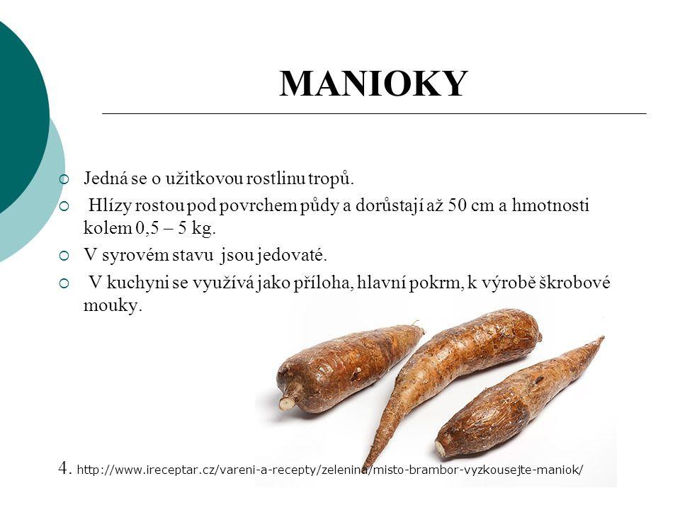 MANIOKY  Jedná se o užitkovou rostlinu tropů.